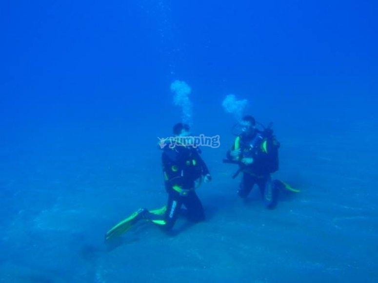 在Alcala潜水