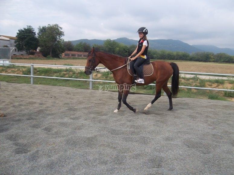 Con el caballo paseando por la pista