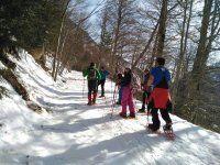 With snowshoes in the Pineta