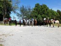 Equestrian camp in Burgos