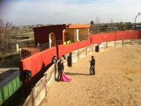 马德里的工匠斗牛场