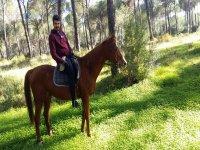 Ruta a caballo por el Parque de Doñana 90 minutos