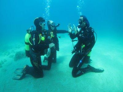 Curso Open Water Diver, en Madrid y Jávea