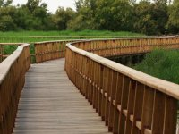 puentes de daimiel
