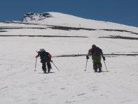 滑雪旅游森林雪景散步峰会标志granaventour