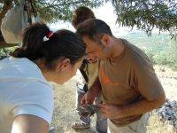 Ringing in the Cabezarrubias mountain range