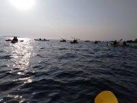 Ruta en kayak con amigos