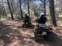Guide in quad by pine forest