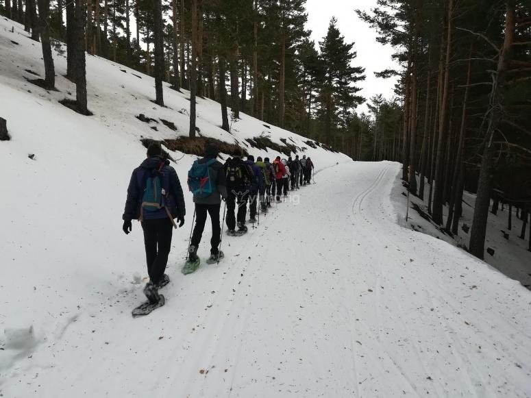Salida en grupo con raquetas de nieve en Peñalara