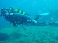 Immersioni in acque trasparenti
