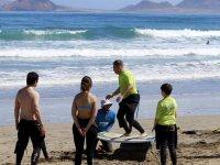 Lavoro di bilanciamento in classe di surf