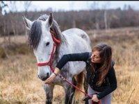 Cuidando del caballo
