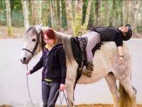 Trabajando con el caballo