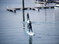 与港口附近的桨冲浪板一起前进