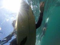 Bajo las olas