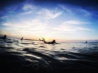 Nada mejor que las olas y el surf