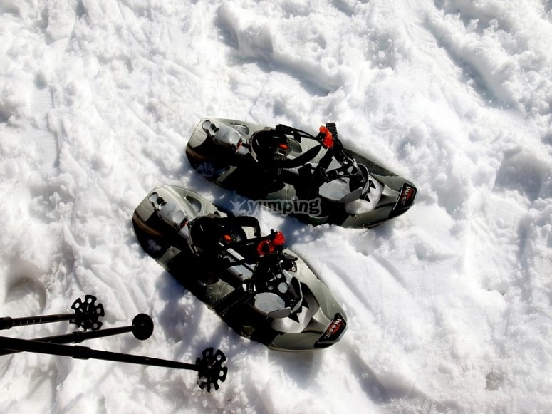 Racchette da neve