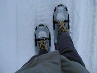 穿着雪鞋走放置