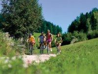 标志山地自行车路线