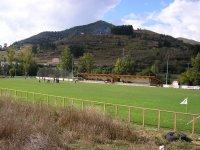 Campo de hierba natural