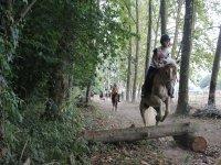 Cavaliere che salta a cavallo