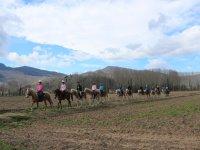 上涨的小马骑马穿过赫罗纳Peque
