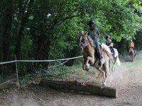 Pista di ostacoli naturali trainata da cavalli