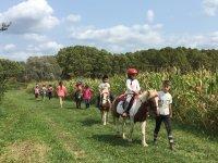 Percorso per bambini con pony