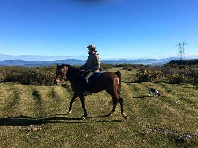 Campo equestre Settimana Santa Trapagarán