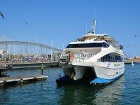 Catamaran ecologico