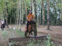 Saltando el tronco