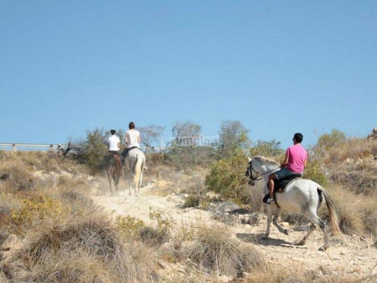 ruta a caballo en Villajoyosa alicante