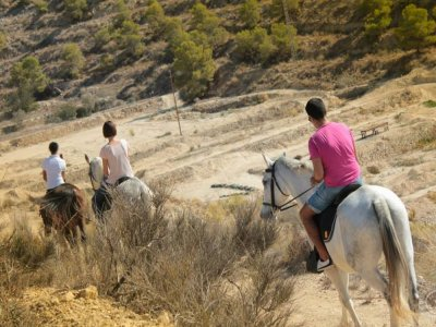Horse Riding in Villajoyosa during 1 hour
