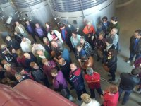 winemakers in the winery