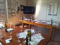 ready for the wine tourism day