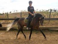 Practicando con el caballo