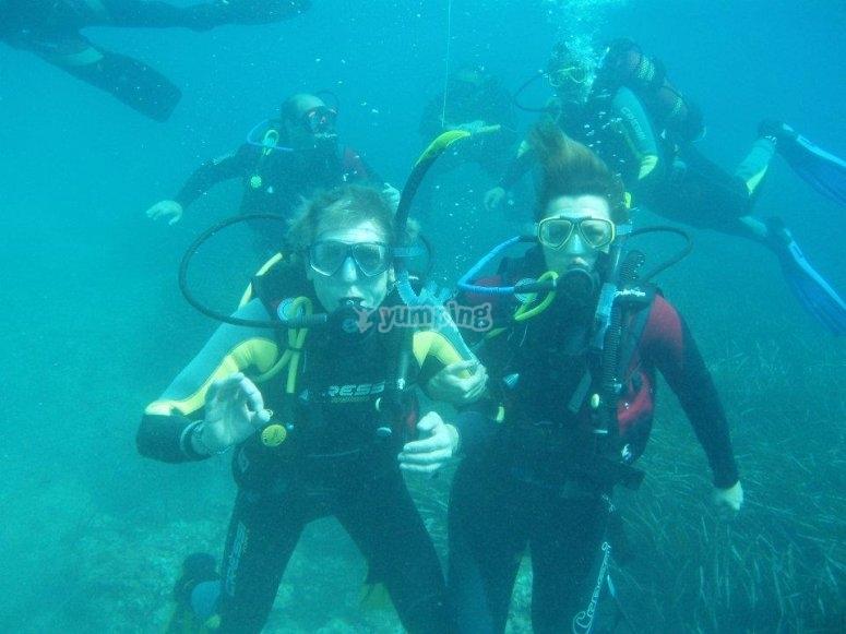 Descubriendo el mundo marino