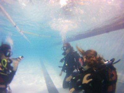 在瓦伦西亚的潜水评论PADI