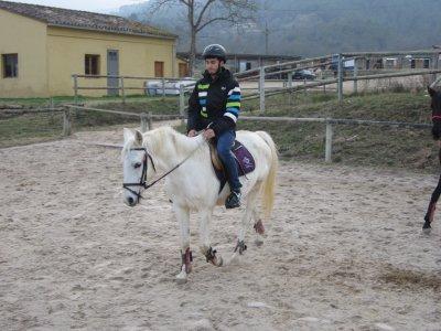 Clase de equitación Porqueres 1h 30 min