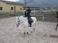 Riding lesson for beginners