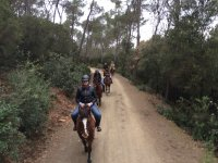 1h horse riding in the Natural Park of Collserola
