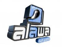Alawa Surf Camp Surf
