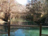 Wooden bridges on the river
