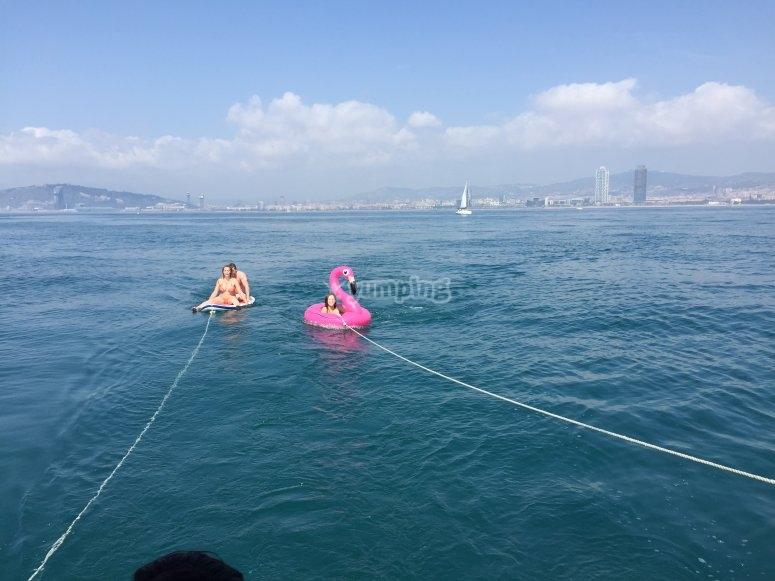 Surf Flamingo