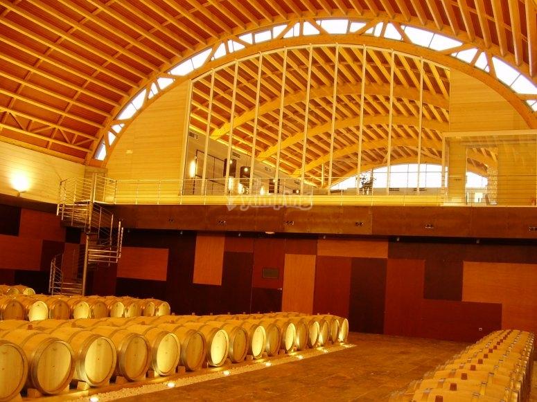 Visita a Bodega en Ciudad Real