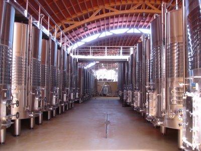 Visita a bodega con degustación de vinos