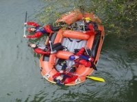 Extended participants in the raft