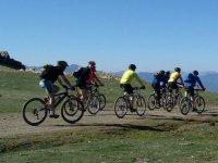 领域集团骑单车