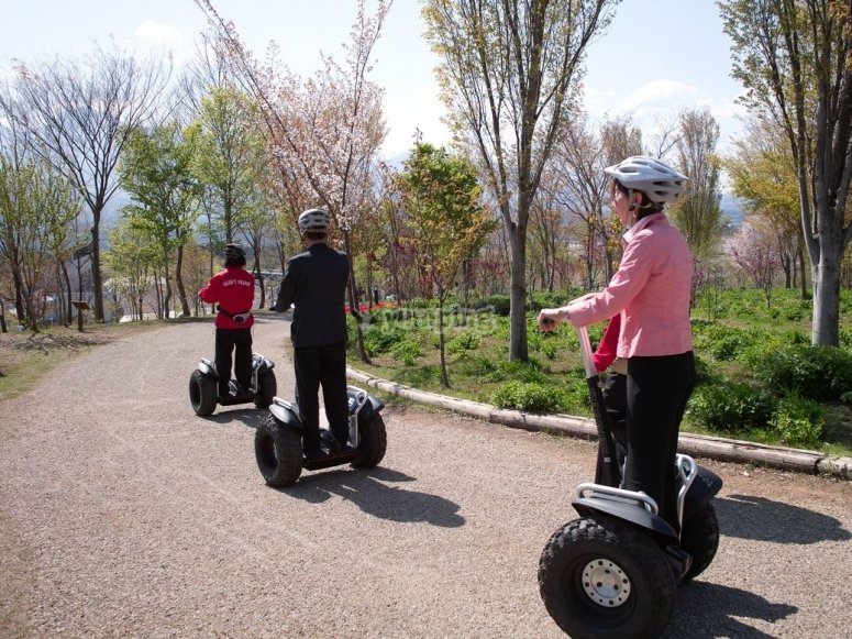 Segway ride through the park