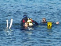 Padi Discover Scuba Diving en Arona, 3 horas